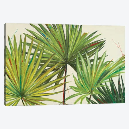 Arte Verde II Canvas Print #PPI29} by Patricia Pinto Art Print