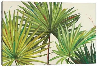 Arte Verde II Canvas Art Print