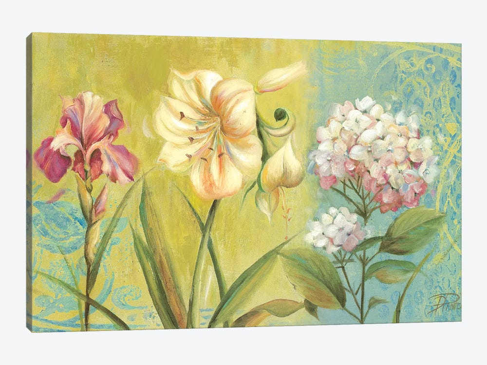 The Garden I by Patricia Pinto 1-piece Canvas Art
