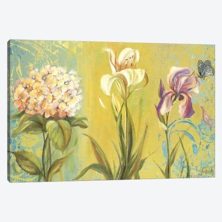 The Garden II Canvas Print #PPI302} by Patricia Pinto Canvas Art Print
