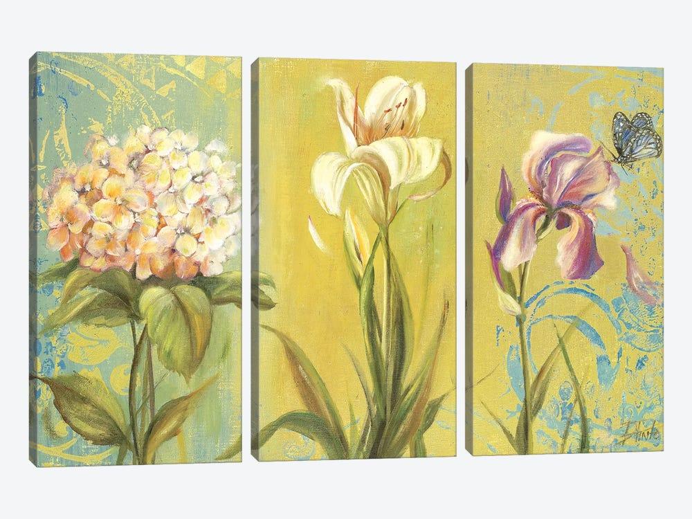 The Garden II by Patricia Pinto 3-piece Art Print