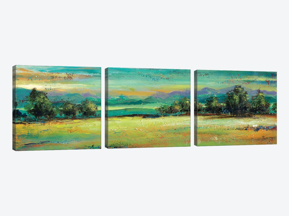 The Green Forest by Patricia Pinto 3-piece Canvas Wall Art
