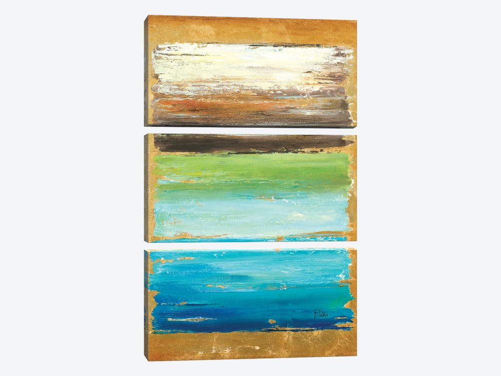 The Palette by Patricia Pinto 3-piece Canvas Print