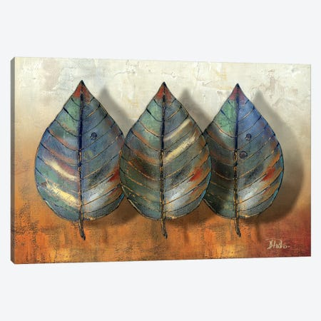 Three Amigos II Canvas Print #PPI313} by Patricia Pinto Canvas Wall Art