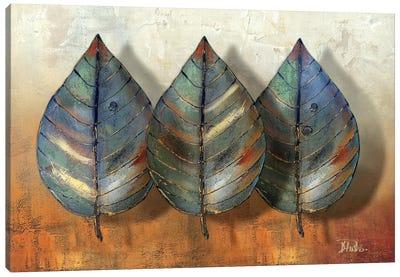 Three Amigos II Canvas Art Print