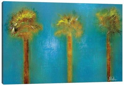 Three Palms I Canvas Art Print