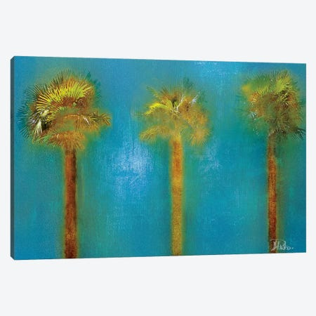 Three Palms I Canvas Print #PPI314} by Patricia Pinto Canvas Print