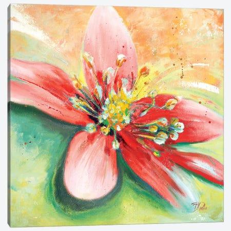 Tropical Splendor I Canvas Print #PPI318} by Patricia Pinto Canvas Artwork