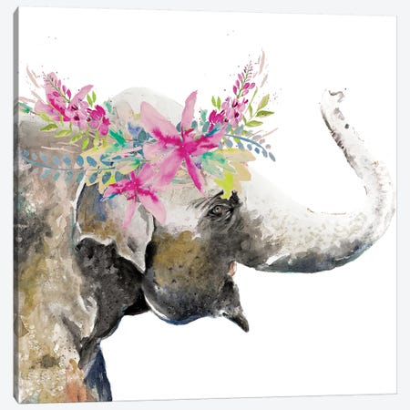 Water Elephant with Flower Crown Canvas Print #PPI330} by Patricia Pinto Canvas Art