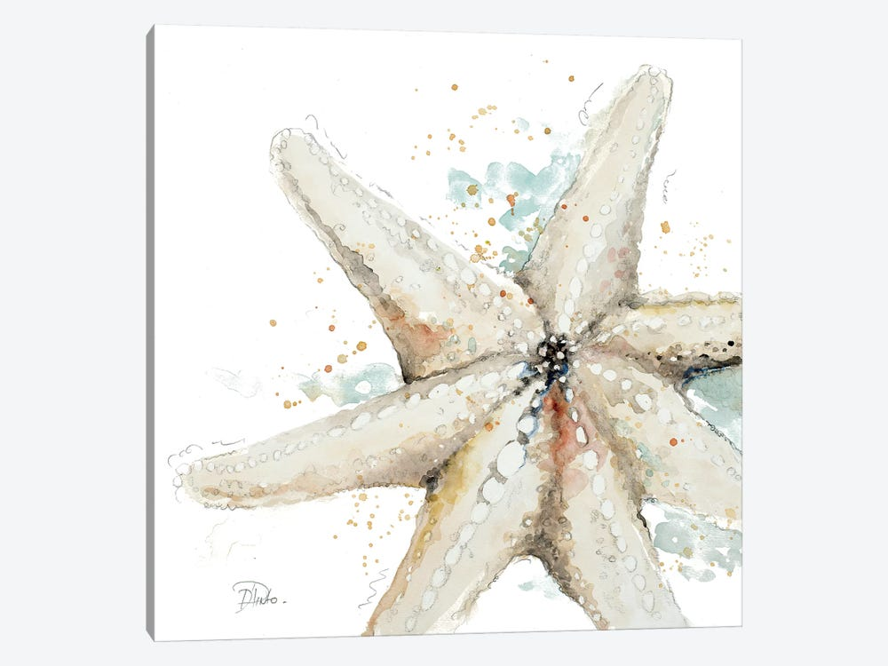 Water Starfish by Patricia Pinto 1-piece Canvas Artwork