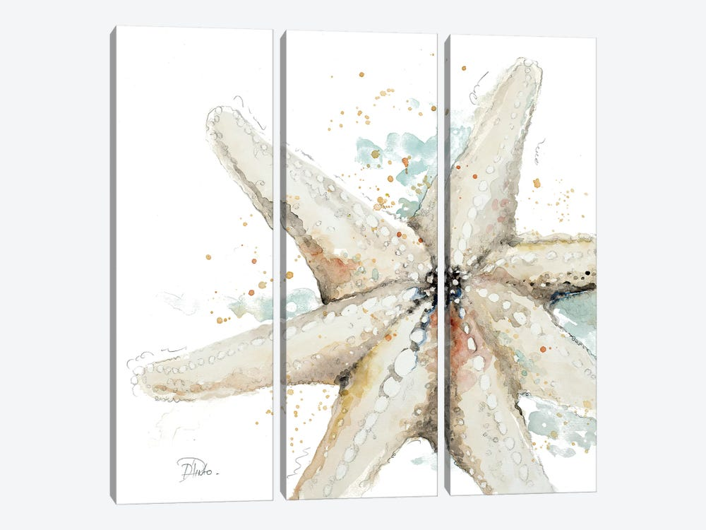 Water Starfish 3-piece Canvas Artwork