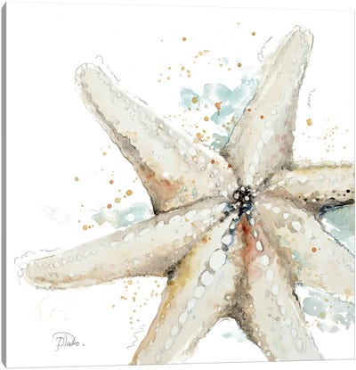 Water Starfish Canvas Art Print