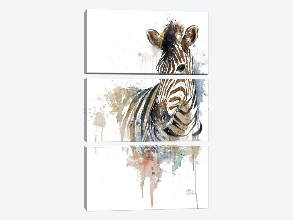 Water Zebra by Patricia Pinto 3-piece Art Print
