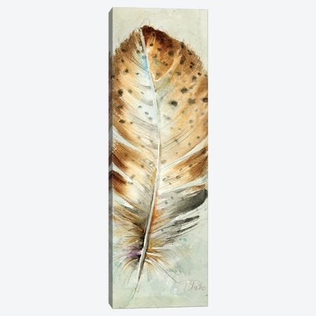 Watercolor Feather III Canvas Print #PPI338} by Patricia Pinto Canvas Wall Art