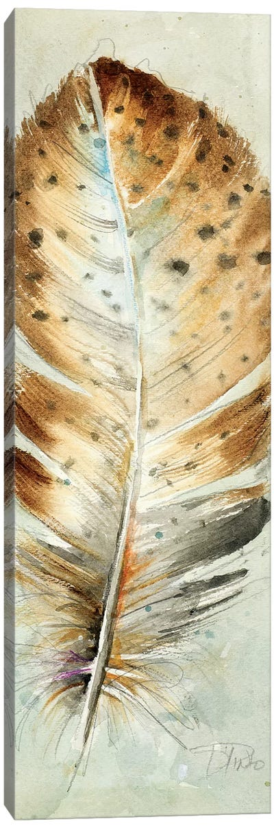 Watercolor Feather III Canvas Art Print