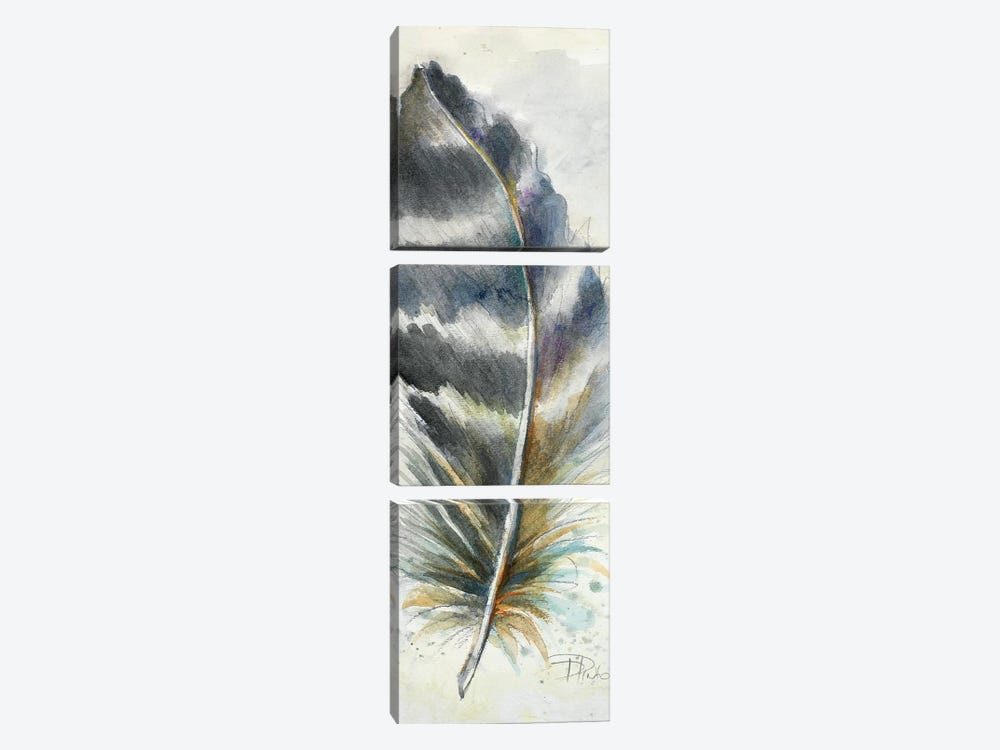 Watercolor Feather VI by Patricia Pinto 3-piece Canvas Art Print