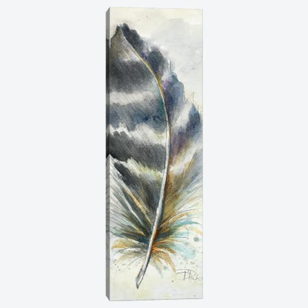 Watercolor Feather VI Canvas Print #PPI340} by Patricia Pinto Canvas Print