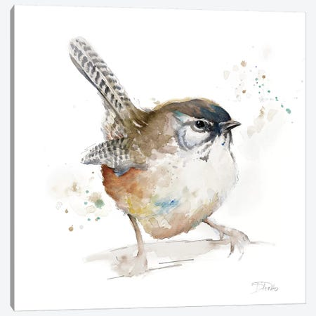 Watercolor Mountain Bird I Canvas Print #PPI342} by Patricia Pinto Art Print