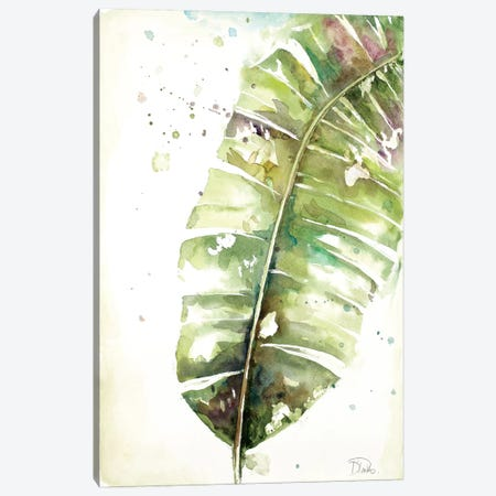 Watercolor Plantain Leaves II Canvas Print #PPI346} by Patricia Pinto Canvas Wall Art