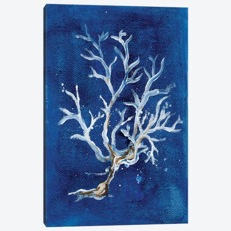 White Corals I Canvas Print #PPI349} by Patricia Pinto Art Print