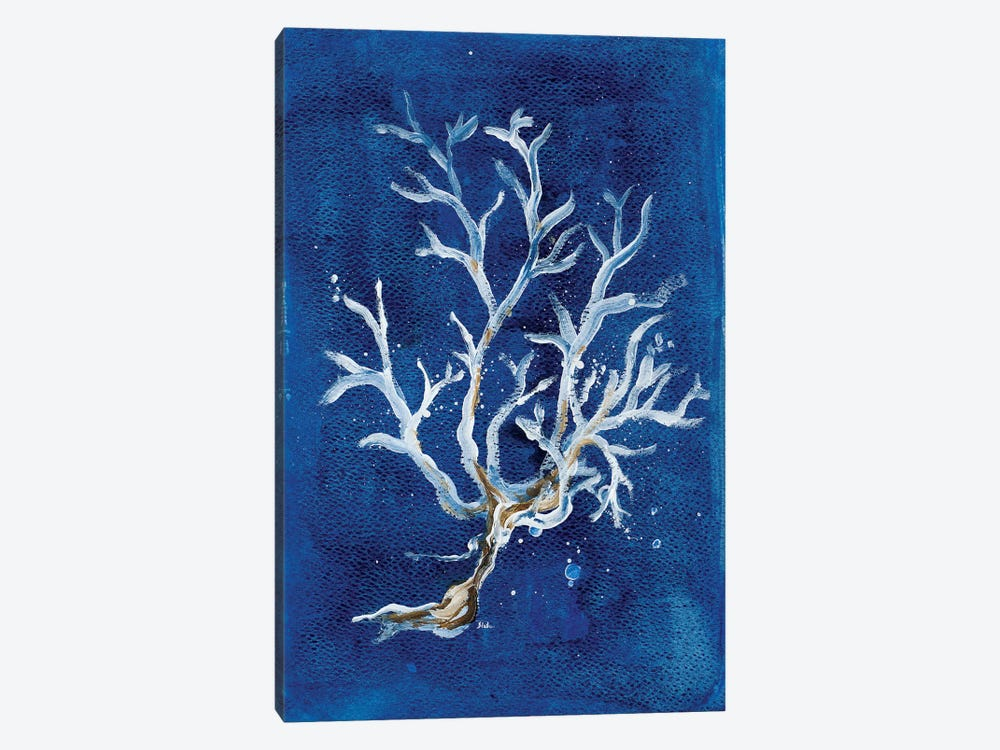 White Corals I by Patricia Pinto 1-piece Canvas Art