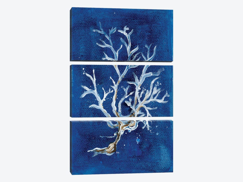 White Corals I by Patricia Pinto 3-piece Canvas Art