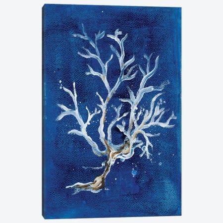 White Corals I Canvas Print #PPI349} by Patricia Pinto Art Print