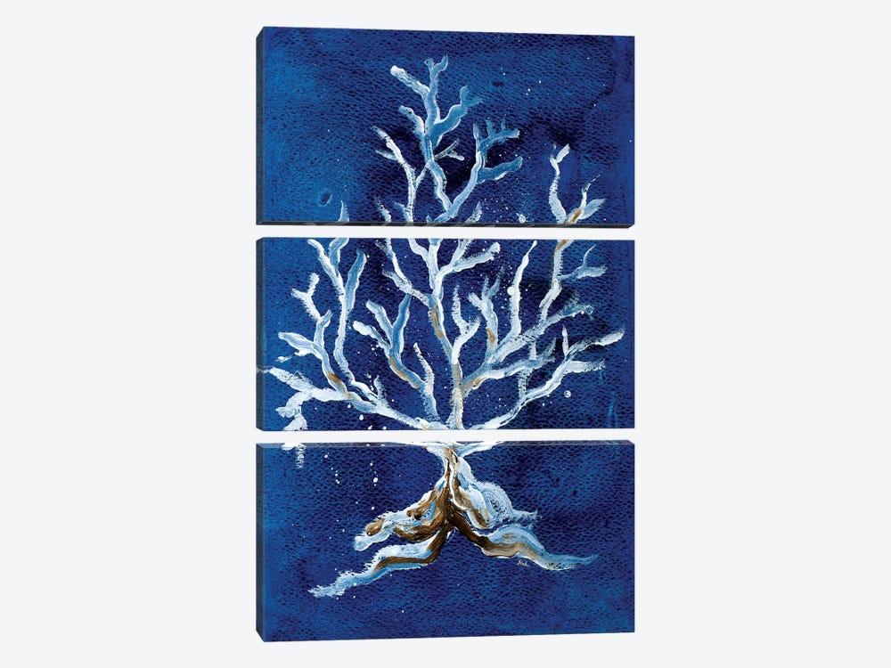 White Corals II by Patricia Pinto 3-piece Canvas Artwork