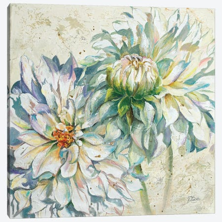 White Dahlias I Canvas Print #PPI351} by Patricia Pinto Canvas Artwork