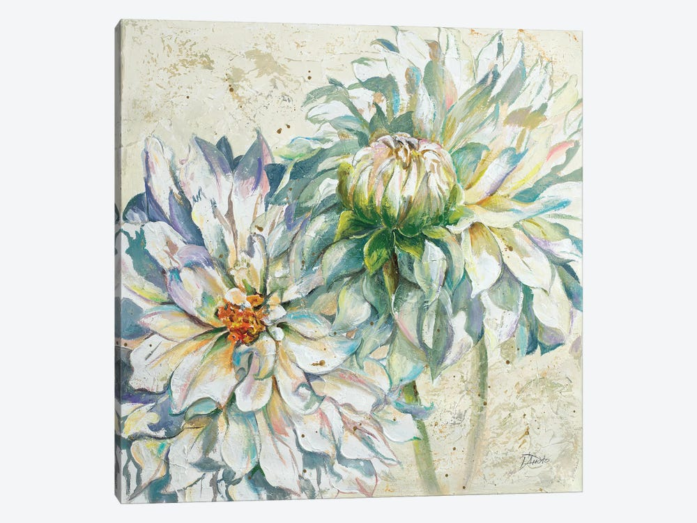 White Dahlias I by Patricia Pinto 1-piece Canvas Print