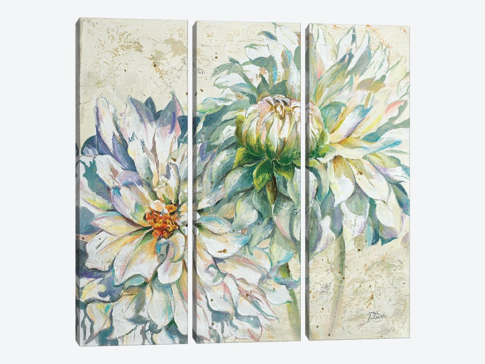 White Dahlias I by Patricia Pinto 3-piece Canvas Art Print
