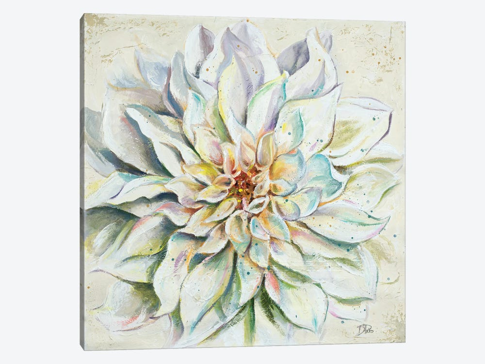 White Dahlias II by Patricia Pinto 1-piece Canvas Artwork