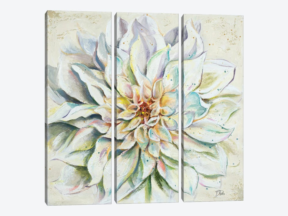 White Dahlias II 3-piece Canvas Art