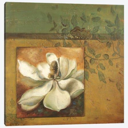White Nature I Canvas Print #PPI353} by Patricia Pinto Canvas Artwork