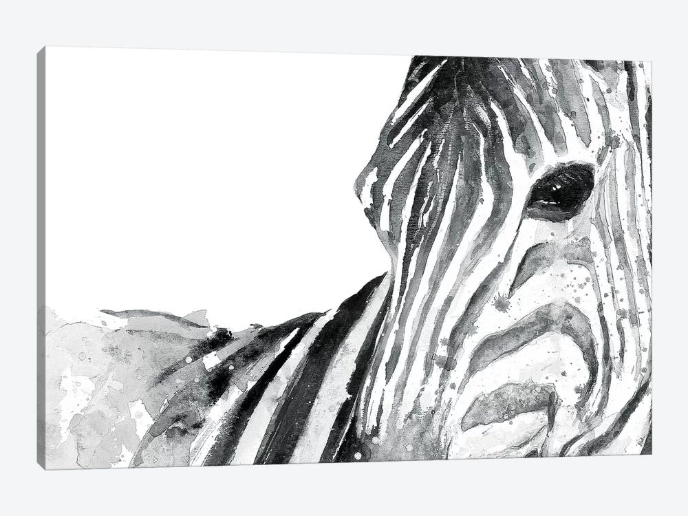 Zebra Gaze by Patricia Pinto 1-piece Canvas Wall Art