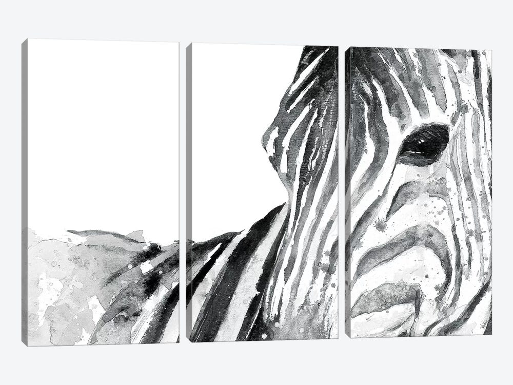 Zebra Gaze by Patricia Pinto 3-piece Canvas Artwork