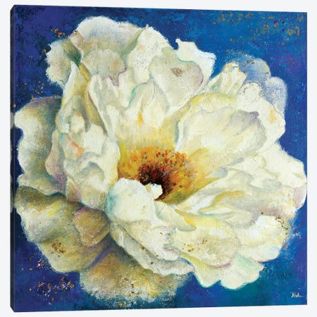 Zuzu Peony I Canvas Print #PPI359} by Patricia Pinto Canvas Wall Art