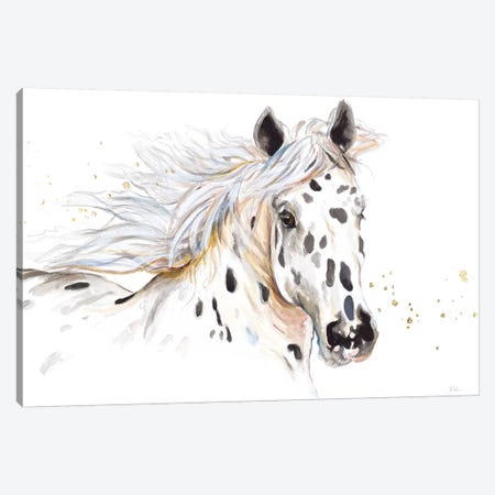Appaloosa Canvas Print #PPI373} by Patricia Pinto Canvas Artwork