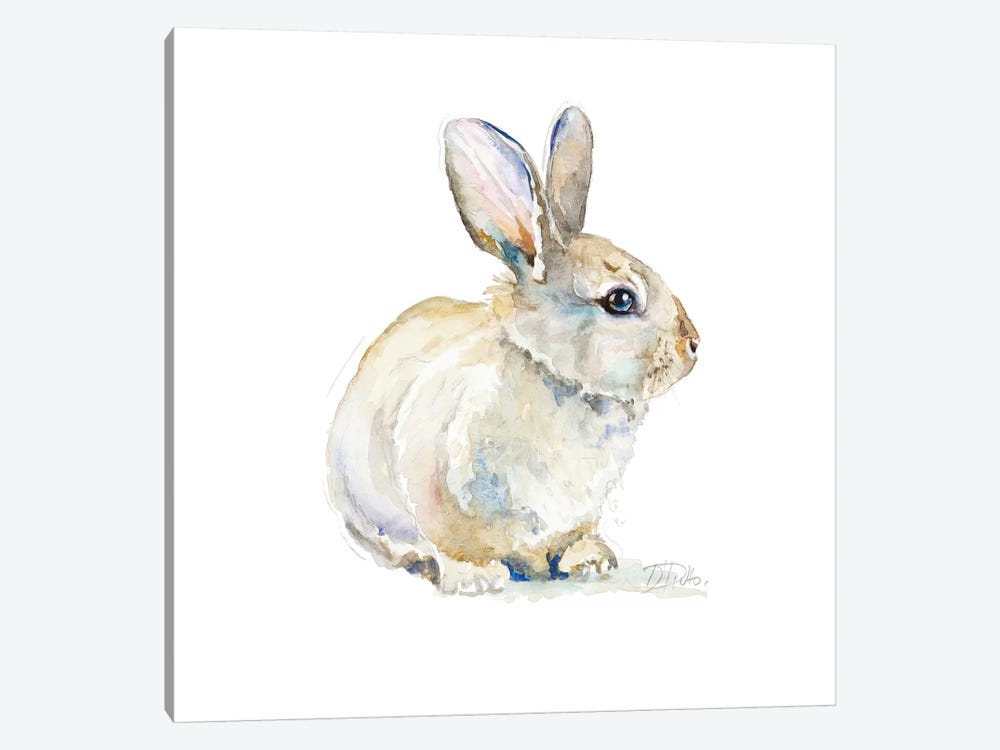 Baby Rabbit by Patricia Pinto 1-piece Canvas Wall Art