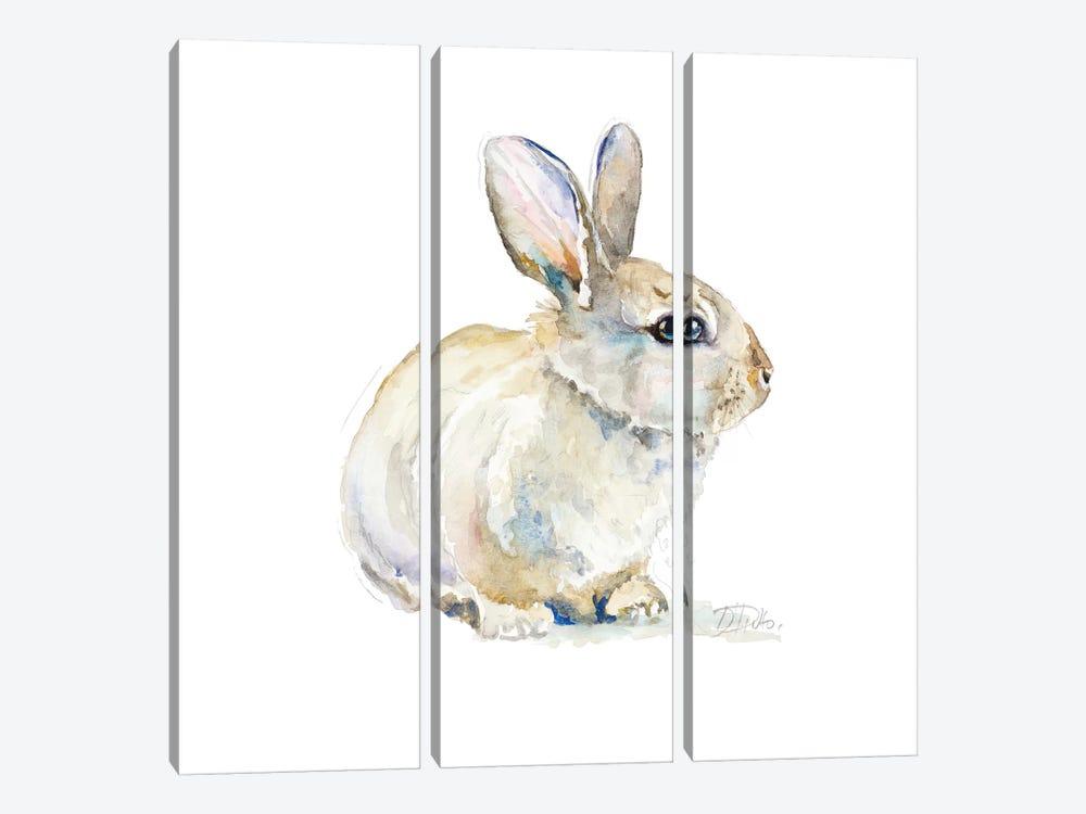 Baby Rabbit by Patricia Pinto 3-piece Canvas Artwork