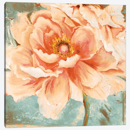 Beautiful Peonies Square I Canvas Print #PPI384} by Patricia Pinto Canvas Artwork