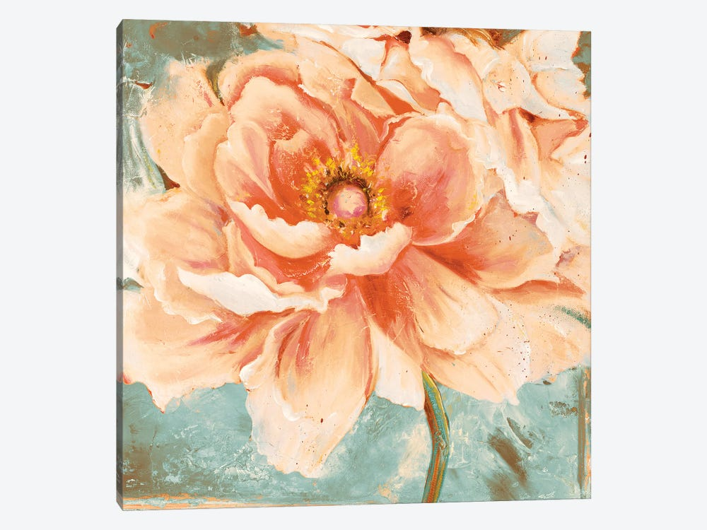 Beautiful Peonies Square I by Patricia Pinto 1-piece Canvas Art Print