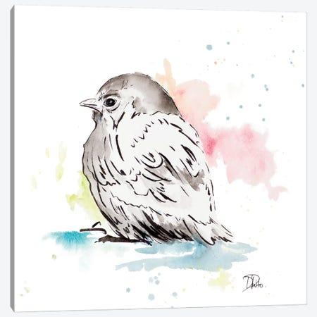 Bird Sketch I Canvas Print #PPI389} by Patricia Pinto Canvas Art Print