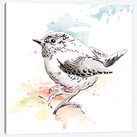 Bird Sketch II Canvas Print #PPI390} by Patricia Pinto Canvas Wall Art