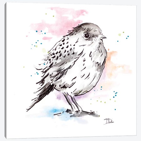 Bird Sketch III Canvas Print #PPI391} by Patricia Pinto Canvas Wall Art