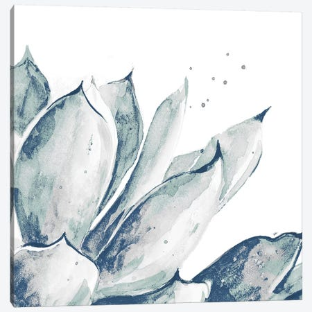 Blue Agave On White II Canvas Print #PPI395} by Patricia Pinto Art Print