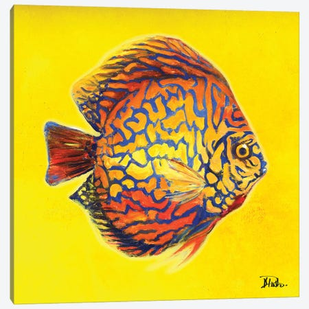 Bright Aquatic Life I Canvas Print #PPI401} by Patricia Pinto Canvas Artwork