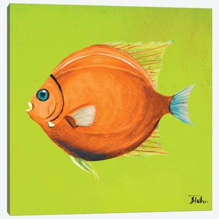 Bright Aquatic Life II Canvas Print #PPI402} by Patricia Pinto Canvas Art