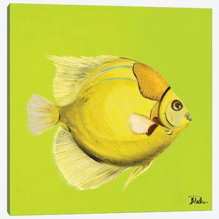 Bright Aquatic Life III Canvas Print #PPI403} by Patricia Pinto Canvas Artwork
