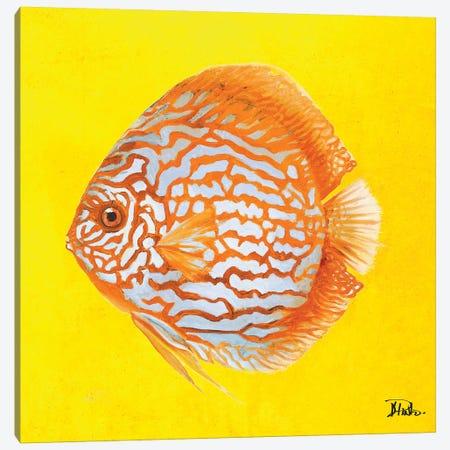 Bright Aquatic Life IV Canvas Print #PPI404} by Patricia Pinto Canvas Art Print